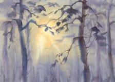 在有薄雾的森林水彩的太阳光芒 免版税图库摄影
