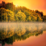 在有薄雾的湖的金黄日落在秋天公园 免版税库存照片