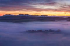 在有薄雾的风景的日出 有雾的早晨天空风景看法与朝阳的在有薄雾的欧洲上的森林中间夏天本质 库存图片