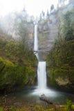 在有雾和雨天,马特诺玛瀑布,俄勒冈期间,巨大和剧烈的瀑布 库存图片