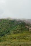 在有雾的云彩的山Hoverla 免版税库存图片