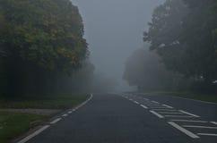 在有雾的危险路,秋天天 秋天颜色森林留下路星期日 免版税库存图片