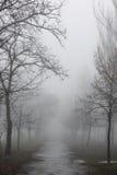 在有雾的天气的道路 免版税库存图片