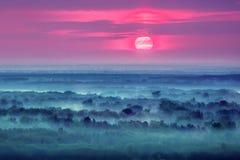 在有雾的小山的日出 免版税库存照片