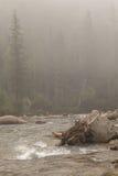 在有雾的山河的门限。 免版税库存照片