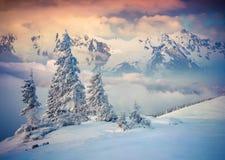 在有雾的山的五颜六色的冬天日出 免版税图库摄影
