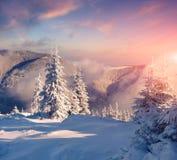 在有雾的山的五颜六色的冬天早晨 免版税库存照片