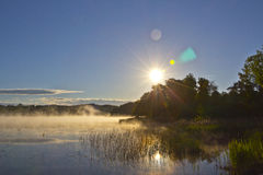 在有雾的湖的日出 免版税库存图片