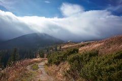在有雾的谷的看法在喀尔巴阡山脉的冬天 库存照片