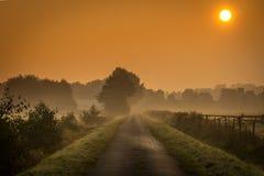 在有雾的领域的日出 免版税库存照片