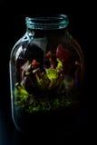 在有食肉动物植物的一个瓶子做的玻璃容器 库存图片