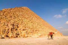 在有骆驼的Gisa使埃及金字塔环境美化看法  免版税库存照片