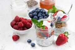 在有chia的一个瓶子用早餐,莓果和燕麦剥落,顶视图 库存图片