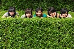 在朋友女孩组隐藏的结构树之后 免版税库存图片