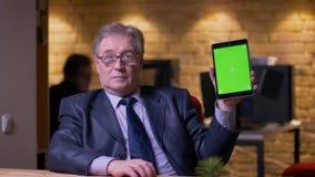 在服装的资深商人在片剂的应用程序转动并且显示绿色色度屏幕它入照相机在办公室 股票视频