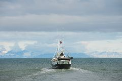 在朗伊尔城,挪威运输从朗伊尔城港口的风帆  免版税库存照片