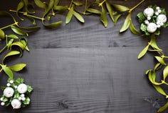 在木书桌上的绿色槲寄生 背景蓝色云彩调遣草绿色本质天空空白小束 圣诞节 免版税库存照片
