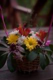 在木书桌摄影的菊花花束 图库摄影
