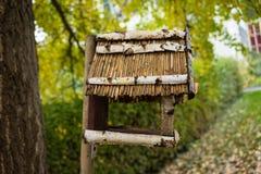 在木侧视图外面的鸟房子 免版税图库摄影