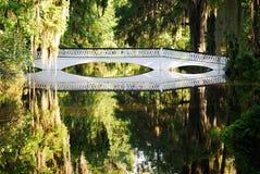 在木兰种植园和庭院的长的白色桥梁 库存照片