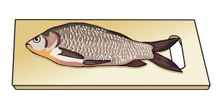 在木切板的新鲜的被抓的鱼 海鱼 河鱼 鞋子标度 鱼的准备 烹调法 向量 免版税图库摄影