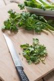 在木切板的新鲜的香菜 图库摄影