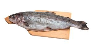 在木切板的新鲜的鳟鱼 免版税图库摄影