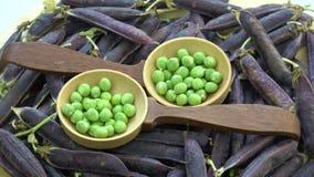 在木匙子和紫罗兰色豌豆荚背景的转动的绿豆 影视素材