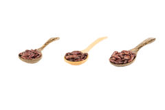 在木匙子孤立的红色扁豆在白色 免版税图库摄影