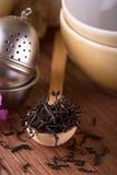 在木匙子安置的干茶堆 免版税库存图片