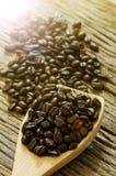 在木匙子的咖啡种子 库存照片