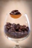 在木匙子的咖啡豆 免版税库存照片