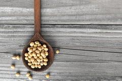在木匙子的大豆 免版税库存照片