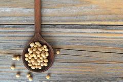 在木匙子的大豆 库存照片
