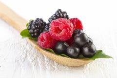 在木匙子的森林莓果 免版税库存照片