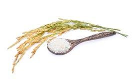 在木匙子的白米和在白色隔绝的未磨碎的米 库存图片