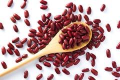在木匙子的红豆整个五谷 免版税库存照片