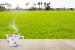 在木台式的热的咖啡杯在被弄脏的绿色米领域和棕榈树背景 库存图片