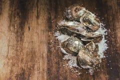 在木和海盐的十二只新鲜的牡蛎 顶视图 免版税库存图片