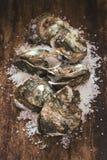 在木和海盐的十二只新鲜的牡蛎 顶视图 免版税库存照片