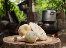 在木地板上的新鲜的蘑菇 免版税库存照片