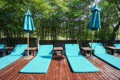 在木地板上的浅兰的水池椅子在豪华旅馆里 库存照片