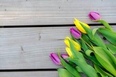 在木地面的黄色和紫罗兰色郁金香 库存照片