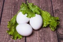 在木基地的鸡鸡蛋 免版税库存照片