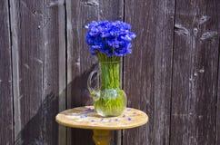 在木墙壁安置的水罐的矢车菊户外 免版税库存图片