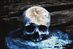 在木墙壁的背景的真正的人的头骨 库存照片