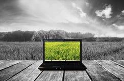 在木大阳台的计算机膝上型计算机有自然视图背景 对比五颜六色的屏幕有黑白背景 免版税库存照片