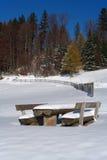 在木头之下的雪表 免版税库存图片
