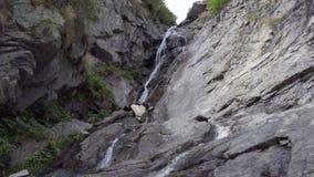 在木头的一点瀑布在阿尔卑斯在夏天 股票视频