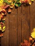 在木头的秋叶 图库摄影